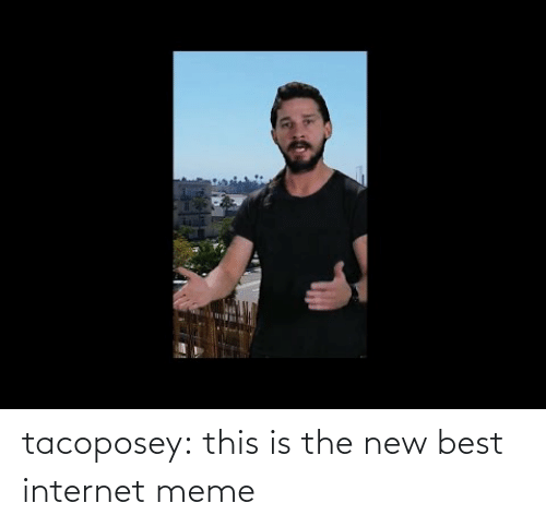 internet meme: tacoposey:  this is the new best internet meme