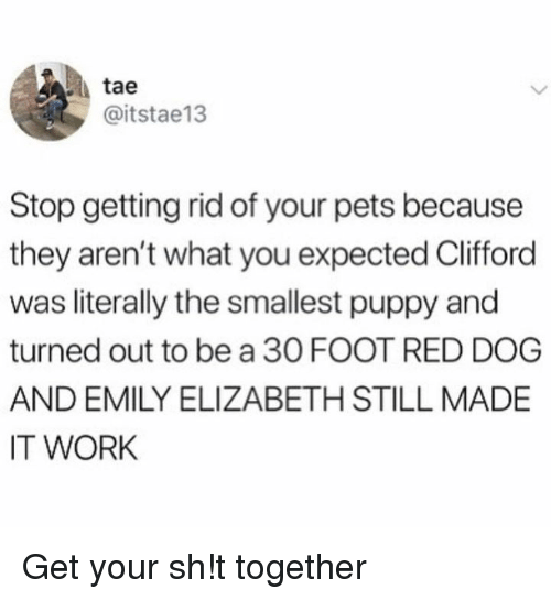 red dog: tae  @itstae13  Stop getting rid of your pets because  they aren't what you expected Clifford  was literally the smallest puppy and  turned out to be a 30 FOOT RED DOG  AND EMILY ELIZABETH STILL MADE  IT WORK Get your sh!t together