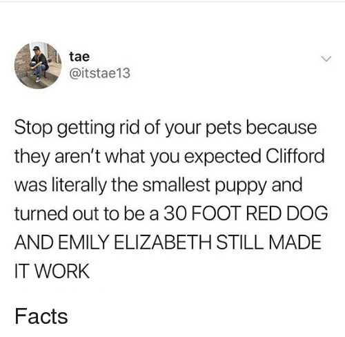 red dog: tae  @itstae13  Stop getting rid of your pets because  they aren't what you expected Clifford  was literally the smallest puppy and  turned out to be a 30 FOOT RED DOG  AND EMILY ELIZABETH STILL MADE  IT WORK Facts