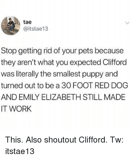 red dog: tae  @itstae13  Stop getting rid of your pets because  they aren't what you expected Clifford  was literally the smallest puppy and  turned out to be a 30 FOOT RED DOG  AND EMILY ELIZABETH STILL MADE  IT WORK This. Also shoutout Clifford. Tw: itstae13