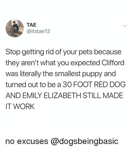 red dog: TAE  @itstae13  Stop getting rid of your pets because  they aren't what you expected Clifford  was literally the smallest puppy and  turned out to be a 30 FOOT RED DOG  AND EMILY ELIZABETH STILL MADE  IT WORK no excuses @dogsbeingbasic