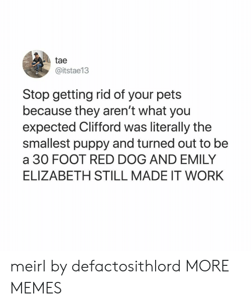 Dank, Memes, and Target: tae  @itstae13  Stop getting rid of your pets  because they aren't what you  expected Clifford was literally the  smallest puppy and turned out to be  a 30 FOOT RED DOG AND EMILY  ELIZABETH STILL MADE IT WORK meirl by defactosithlord MORE MEMES