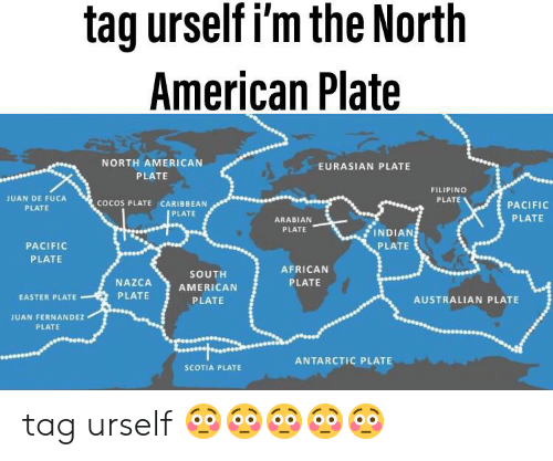 Easter, American, and Indian: tag urself i'm the North  American Plate  NORTH AMERICAN  EURASIAN PLATE  PLATE  FILIPINO  JUAN DE FUCA  cocos PLATE CARIBBEAN  PLATE  PLATE  PACIFIC  PLATE  ARABIAN  PLATE  INDIAN  PLATE  PACIFIC  PLATE  PLATE  AFRICAN  SOUTH  PLATE  NAZCA  AMERICAN  PLATE  EASTER PLATE  AUSTRALIAN PLATE  PLATE  JUAN FERNANDEZ  PLATE  ANTARCTIC PLATE  SCOTIA PLATE tag urself 😳😳😳😳😳