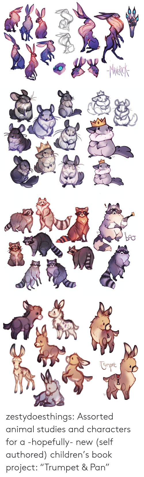 "Children, Tumblr, and Animal: TAI   rmpet  TA' zestydoesthings:  Assorted animal studies and characters for a -hopefully- new (self authored) children's book project: ""Trumpet & Pan"""