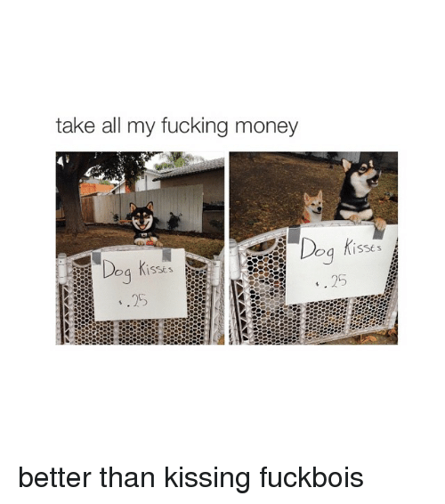 Dogs, Fucking, and Money: take all my fucking money  Dog  is sts  ISSE s better than kissing fuckbois