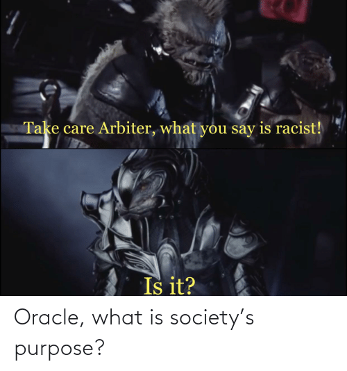 arbiter: Take care Arbiter, what you say is racist!  Is it? Oracle, what is society's purpose?