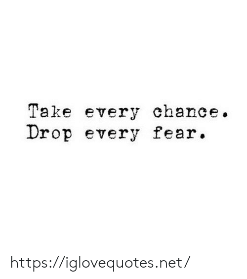 Fear, Net, and Chance: Take every chance.  Drop every fear. https://iglovequotes.net/