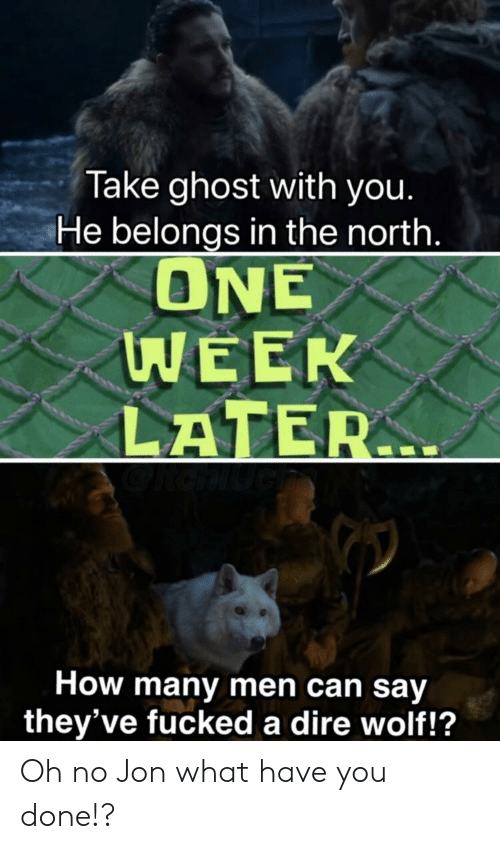 dire wolf: Take ghost with you.  He belongs in the north.  ONE  WEEK  LATER  How many men can say  they've fucked a dire wolf!? Oh no Jon what have you done!?