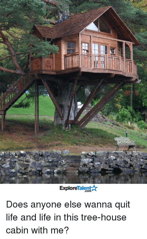 talent explore: Talent  Explore Does anyone else wanna quit life and life in this tree-house cabin with me?