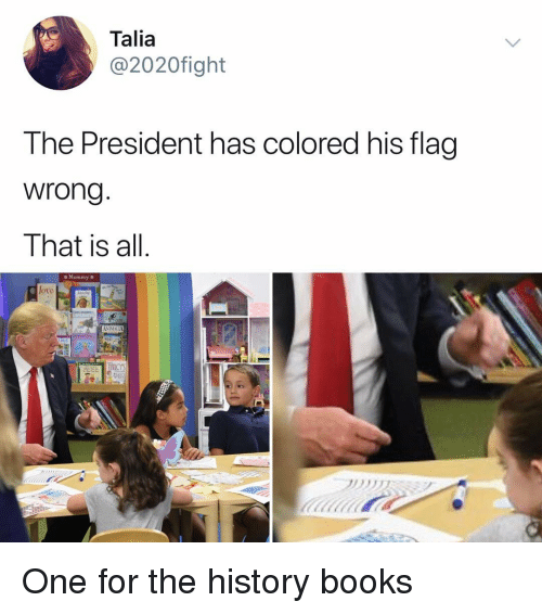 Books, Memes, and History: Talia  @2020fight  The President has colored his flag  wrong  That is all.  o Mommy a  loto One for the history books