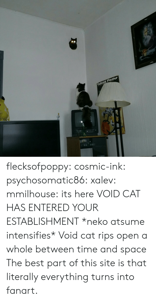 Its Here: talking Posler flecksofpoppy: cosmic-ink:  psychosomatic86:  xalev:  mmilhouse:  its here  VOID CAT HAS ENTERED YOUR ESTABLISHMENT  *neko atsume intensifies*     Void cat rips open a whole between time and space  The best part of this site is that literally everything turns into fanart.