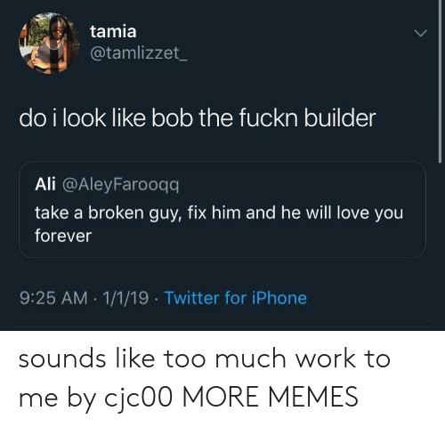 Ali, Dank, and Iphone: tamia  @tamlizzet  do i look like bob the fuckn builder  Ali @AleyFarooqq  take a broken guy, fix him and he will love you  forever  9:25 AM.1/1/19 Twitter for iPhone sounds like too much work to me by cjc00 MORE MEMES