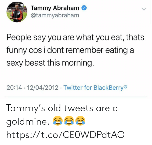 BlackBerry, Funny, and Sexy: Tammy Abraham  @tammyabraham  People say you are what you eat, thats  funny cos i dont remember eating a  sexy beast this morning.  20:14 12/04/2012 Twitter for BlackBerry Tammy's old tweets are a goldmine. 😂😂😂 https://t.co/CE0WDPdtAO
