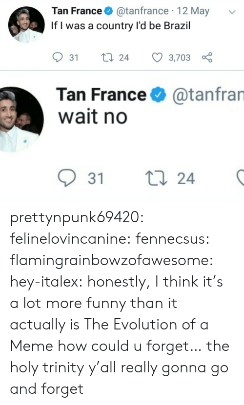 Funny, Meme, and Tumblr: Tan France@tanfrance 12 May  If l was a country l'd be Brazil  31 ti 24 3,703  Tan France  wait no  @tanfran  31 t  24 prettynpunk69420:  felinelovincanine:  fennecsus:   flamingrainbowzofawesome:  hey-italex: honestly, I think it's a lot more funny than it actually is The Evolution of a Meme  how could u forget…   the holy trinity  y'all really gonna go and forget