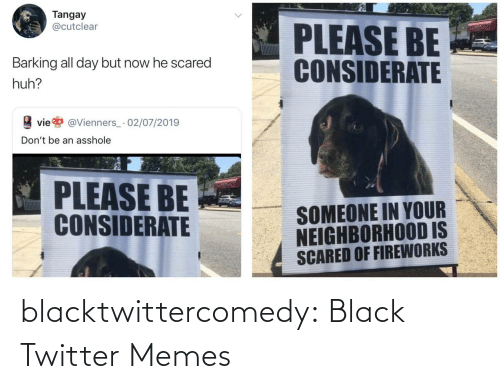 Black Twitter: Tangay  @cutclear  PLEASE BE  CONSIDERATE  Barking all day but now he scared  huh?  vie  @Vienners_· 02/07/2019  Don't be an asshole  PLEASE BE  CONSIDERATE  SOMEONE IN YOUR  NEIGHBORHOOD IS  SCARED OF FIREWORKS blacktwittercomedy:  Black Twitter Memes