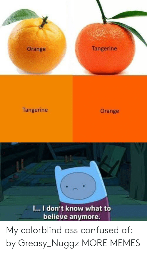 I I: Tangerine  Orange  Tangerine  Orange  I...I don't know what to  believe anymore. My colorblind ass confused af: by Greasy_Nuggz MORE MEMES