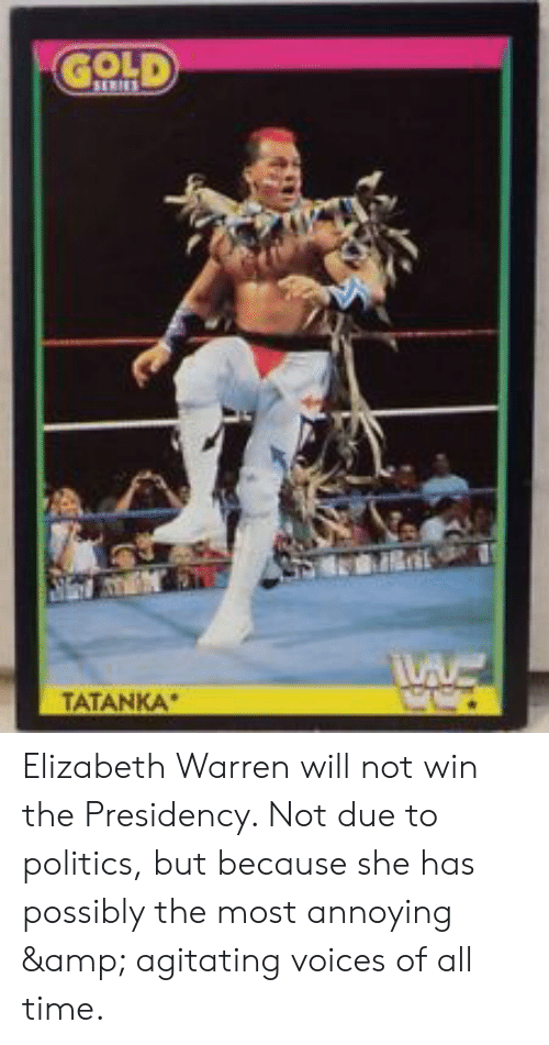 Elizabeth Warren, Politics, and Time: TATANKA Elizabeth Warren will not win the Presidency. Not due to politics, but because she has possibly the most annoying & agitating voices of all time.