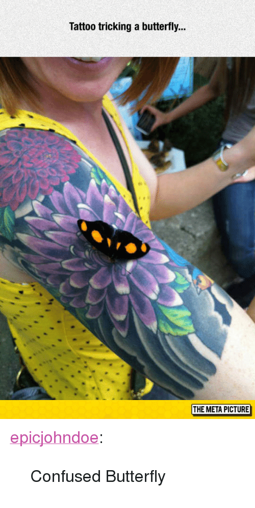 "Tricking: Tattoo tricking a butterfly...  THE META PICTURE <p><a href=""https://epicjohndoe.tumblr.com/post/172729430414/confused-butterfly"" class=""tumblr_blog"">epicjohndoe</a>:</p>  <blockquote><p>Confused Butterfly</p></blockquote>"