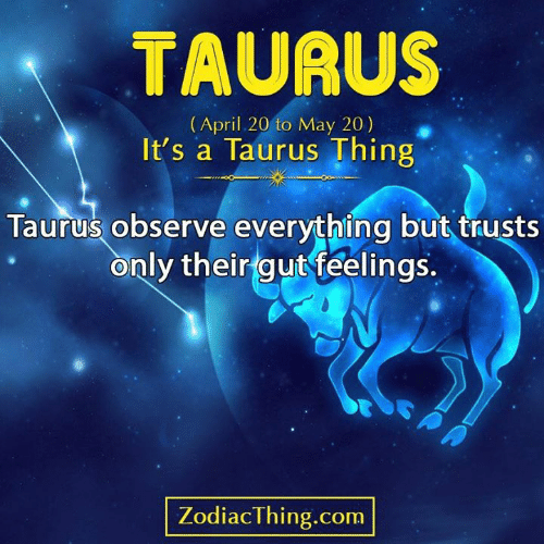 Taurus: TAURUS  (April 20 to May 20)  It's a Taurus Thing  Taurus observe everything but trusts  only their gut feelings.  ZodiacThing.com