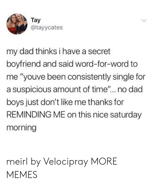 "Have A Secret: Tay  @tayycates  my dad thinks i have a secret  boyfriend and said word-for-word to  me ""youve been consistently single for  a suspicious amount of time... no dad  boys just don't like me thanks for  REMINDING ME on this nice saturday  morning meirl by Velocipray MORE MEMES"