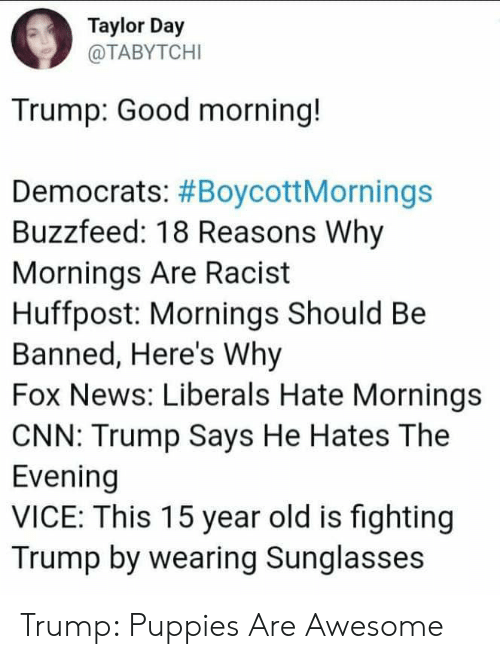 cnn.com, News, and Puppies: Taylor Day  @TABYTCHI  Trump: Good morning!  Democrats: #BoycottMornings  Buzzfeed: 18 Reasons Why  Mornings Are Racist  Huffpost: Mornings Should Be  Banned, Here's Why  Fox News: Liberals Hate Mornings  CNN: Trump Says He Hates The  Evening  VICE: This 15 year old is fighting  Trump by wearing Sunglasses Trump: Puppies Are Awesome
