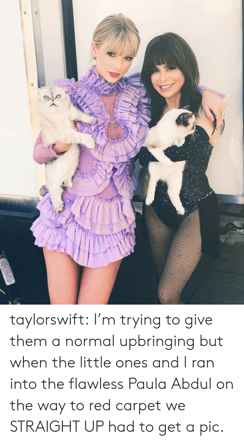 Target, Tumblr, and Blog: taylorswift:  I'm trying to give them a normal upbringing but when the little ones and I ran into the flawless Paula Abdul on the way to red carpet we STRAIGHT UP had to get a pic.