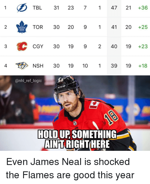 Neal: TBL 31 23 747 21 +36  2  TOR 30 20 941 20 +25  LEA  CGY 30 19 9 240 19 +23  4  NSH 30 19 10139 19+18  @nhl_ref_logic  CM  HOLD UP SOMETHING  AIN'T RIGHTHER Even James Neal is shocked the Flames are good this year