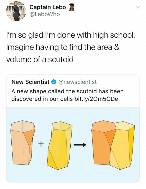 School, Girl Memes, and Been: TCaptain Lebo  @LeboWho  l'm so glad I'm done with high school  Imagine having to find the area &  volume of a scutoid  New Scientist@newscientist  A new shape called the scutoid has been  discovered in our cells bit.ly/20m5CDe