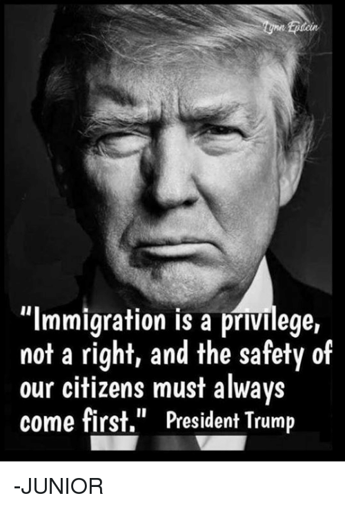 """Memes, Immigration, and Trump: tcin  """"Immigration is a privilege,  not a right, and the safety of  our citizens must always  come first,"""" President Trump -JUNIOR"""