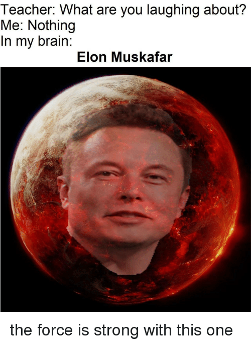 Teacher, Brain, and Strong: Teacher. What are you laughing about?  Me: Nothing  In my brain:  Elon Muskafar the force is strong with this one