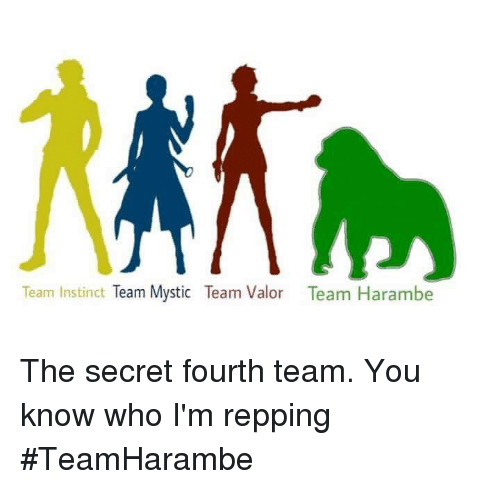 Team Instinct: Team Instinct  Team Mystic Team Valor Team Harambe The secret fourth team. You know who I'm repping  #TeamHarambe