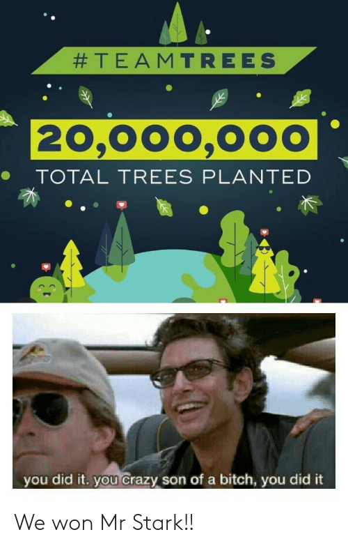 stark:  #TEAMTREES  20,000,000  TOTAL TREES PLANTED  you did it. you crazy son of a bitch, you did it We won Mr Stark!!