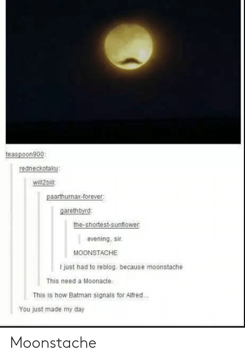 Batman, How, and Sunflower: teaspoon900  redneckotaku:  will2bill  garethbyrd  the-shortest-sunflower  evening, sir.  MOONSTACHE  I just had to reblog. because moonstache  This need a Moonacle  This is how Batman signals for Alfred..  You just made my day Moonstache