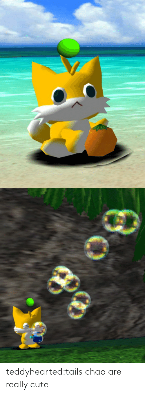 tails: teddyhearted:tails chao are really cute