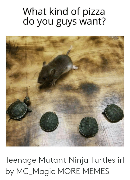 turtles: Teenage Mutant Ninja Turtles irl by MC_Magic MORE MEMES