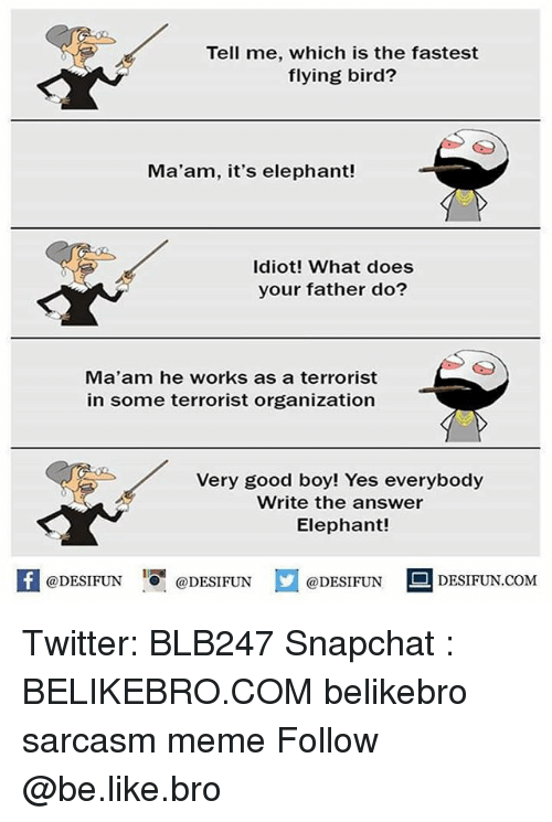 MêMes: Tell me, which is the fastest  flying bird?  Ma'am, it's elephant!  Idiot! What does  your father do?  Ma'am he works as a terrorist  in some terrorist organization  Very good boy! Yes everybody  Write the answer  Elephant!  K @DESIFUN 증@DESIFUN  @DESIFUNDESIFUN.COM Twitter: BLB247 Snapchat : BELIKEBRO.COM belikebro sarcasm meme Follow @be.like.bro