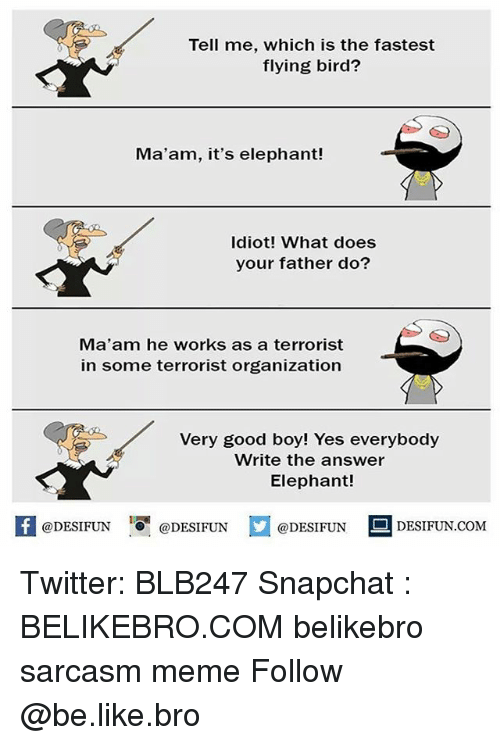 MêMes: Tell me, which is the fastest  flying bird?  Ma'am, it's elephant!  Idiot! What does  your father do?  Ma'am he works as a terrorist  in some terrorist organization  Very good boy! Yes everybody  Write the answer  Elephant!  @DESIFUN ig @DESIFUN  @DESIFUN  DESIFUN.COMM Twitter: BLB247 Snapchat : BELIKEBRO.COM belikebro sarcasm meme Follow @be.like.bro