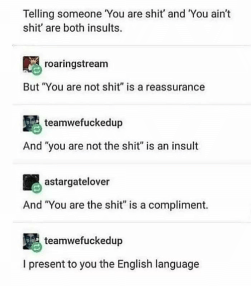 "Shit, English, and Insults: Telling someone You are shit' and You ain't  shit' are both insults.  roaringstream  But ""You are not shit"" is a reassurance  teamwefuckedup  And ""you are not the shit"" is an insult  astargatelover  And ""You are the shit"" is a compliment.  teamwefuckedup  I present to you the English language"