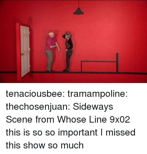 whose line: tenaciousbee:  tramampoline:  thechosenjuan:  Sideways Scene from Whose Line 9x02  this is so so important  I missed this show so much