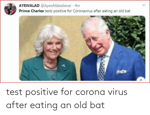 Test: test positive for corona virus after eating an old bat