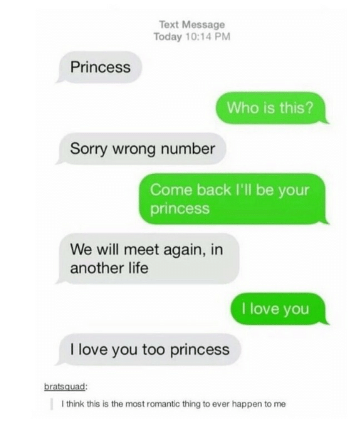Life, Love, and Sorry: Text Message  Today 10:14 PM  Princess  Who is this?  Sorry wrong number  Come back I'll be your  princess  We will meet again, in  another life  I love you  I love you too princess  bratsquad:  I think this is the most romantic thing to ever happen to me