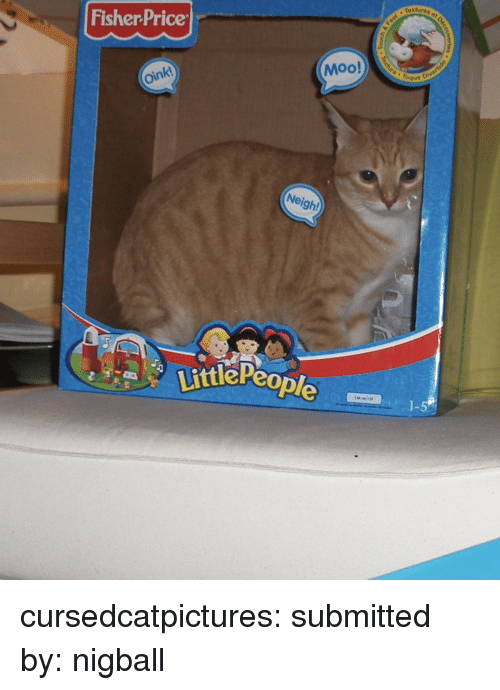 """textures: textures o  Fisher Price  Moo!  """" Toque  oink  Neigh!  ttlePeo  1-5 cursedcatpictures:  submitted by: nigball"""