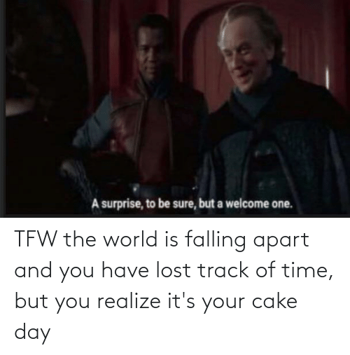 falling: TFW the world is falling apart and you have lost track of time, but you realize it's your cake day