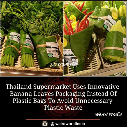 innovative: Thailand Supermarket Uses Innovative  Banana Leaves Packaging Instead Of  Plastic Bags To Avoid Unnecessary  Plastic Waste  Weird Wodd  @ weirdworldinsta