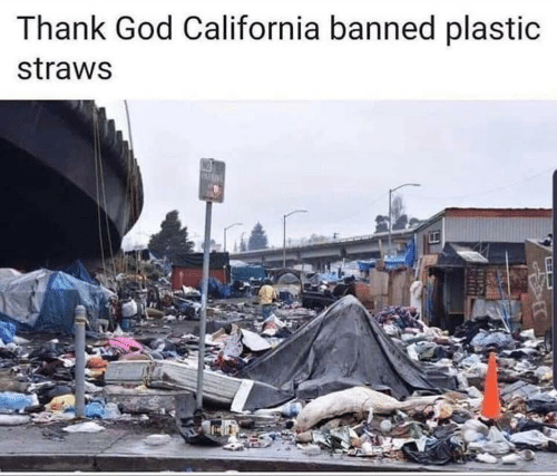 California: Thank God California banned plastic  straws  NO