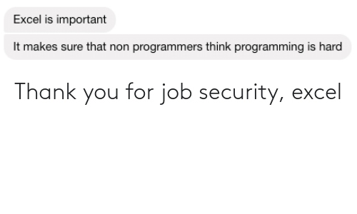 security: Thank you for job security, excel