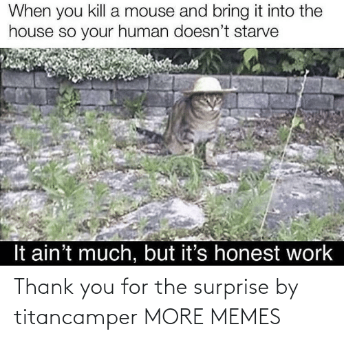 surprise: Thank you for the surprise by titancamper MORE MEMES