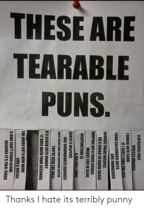 Punny: Thanks I hate its terribly punny