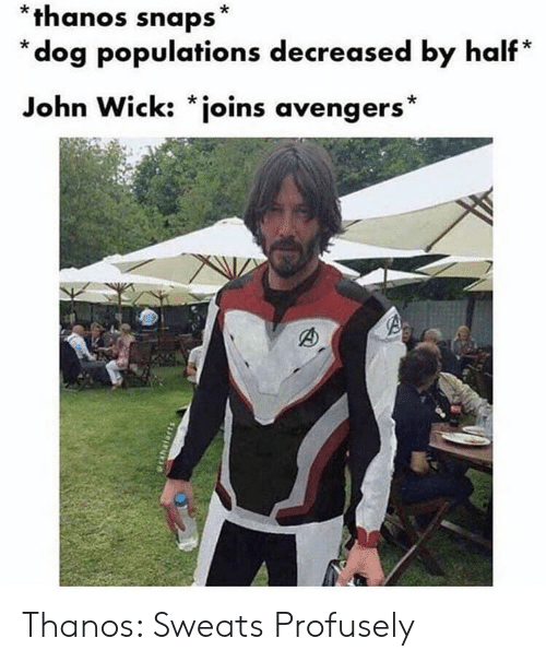 Sweats: *thanos snaps*  * dog populations decreased by half*  John Wick: *joins avengers* Thanos: Sweats Profusely