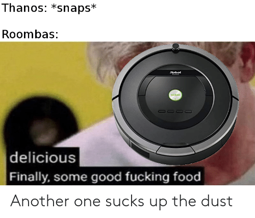Some Good Fucking Food: Thanos: *snaps*  Roombas:  Robot  |delicious  Finally, some good fucking food Another one sucks up the dust